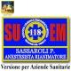 Nuova Etichetta Patch ricamata 12x8cm 118 Regione Veneto